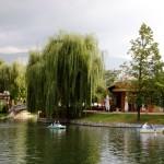 lac Ariana Sofia