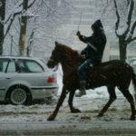 En cheval à Sofia