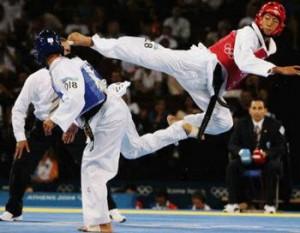 Championnats du Monde de Taekwondo 2013
